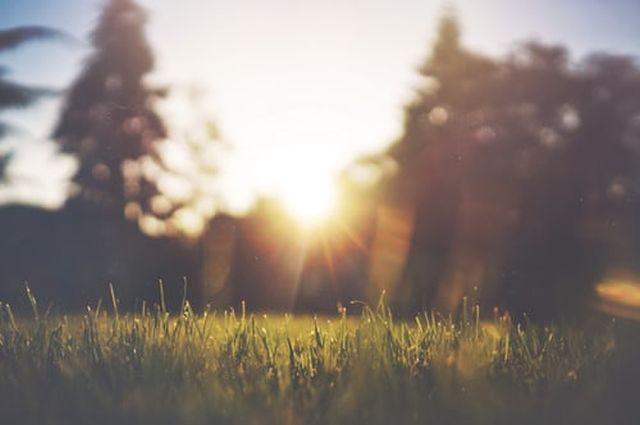 objawy uczulenia na słońce