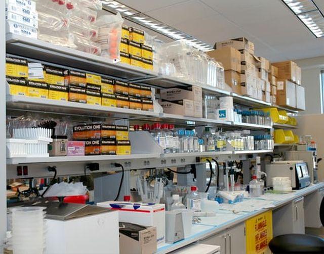 badanie dobowej zbiórki moczu
