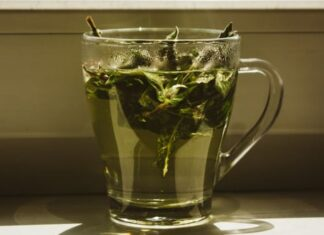 właściwości herbaty konopnej
